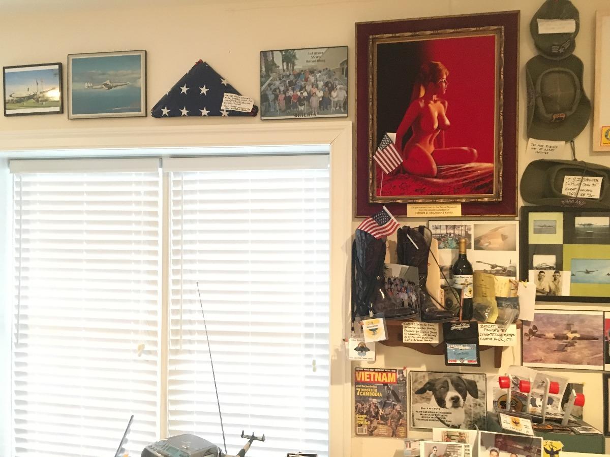 Museum Display Wall 1