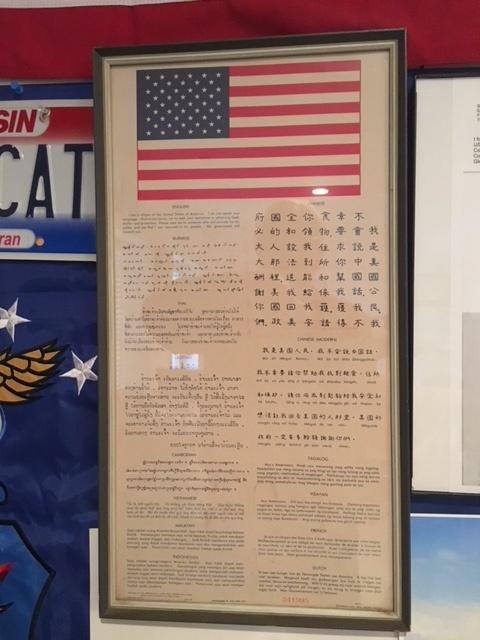 Museum Display Wall 11